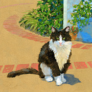 Tuxedo Cat Painting Framed Prints - Guard Cat  Framed Print by Alice Leggett