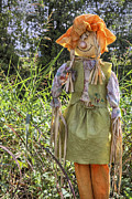 Pig Tails Posters - Guardian of the Pumpkins - Autumn - Scarecrow Poster by Jason Politte
