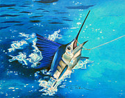 South Pacific Drawings Prints - Guatemalan Sailfish Print by Karen Rhodes