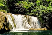 Frank Williams - Guatemalan Waterfalls