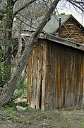 Outhouses Photos - Guests Only  by Juls Adams