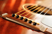 Macro Photo Framed Prints - Guitar bridge Framed Print by Elena Elisseeva