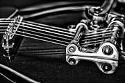 Guitar Reflection Print by Karol  Livote