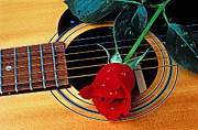 Dew Posters - Guitar with single red rose Poster by Garry Gay