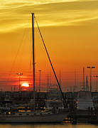 Don Schiffner - Gulfport Harbor