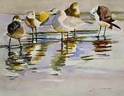 Julianne Felton - Gull Family