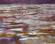 Sea Birds Paintings - Gulls in flight 7-21-11 by Julianne Felton