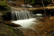Creeks Prints - Gurgling Over A Small Log Print by Jeff  Swan