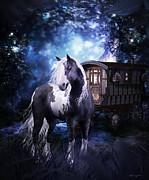 Shanina Conway - Gypsy Dreaming