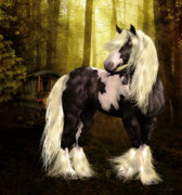 Gypsy Vanner Digital Art - Gypsy Gold by Shanina Conway