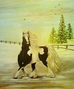 Nancy Stewart - Gypsy Vanner