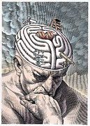 Wellcome Images  - Gyri of Thinker