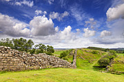 Northumberland Prints - Hadrians Wall Print by Colin and Linda McKie