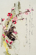 Sensitive Mixed Media Prints - Haiga my spring too is an ecstasy Print by Peter v Quenter