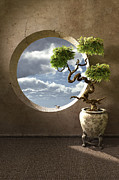 Bonsai Framed Prints - Haiku Framed Print by Cynthia Decker