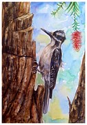 Katerina Kovatcheva - Hairy woodpecker