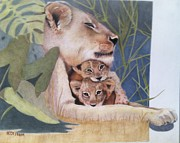 Lion Drawings Originals - Hakuna Matata by Betsy Frahm
