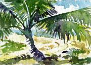 Stacy Vosberg - Haleiwa Palm