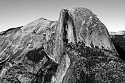 Black Posters - Half Dome - Black and White Poster by Peter Tellone