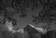 Black And White Photos Prints - Half Dome Full Glory - Landscape Photos Print by Laria Saunders