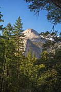 Mountain Valley Framed Prints - Half Dome Yosemite Framed Print by Jane Rix