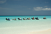 Horseback Riding Posters - Half Moon Cay Bahamas beach scene Poster by David Smith