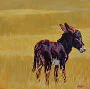 Burro Metal Prints - Half Pint Metal Print by Patricia A Griffin