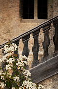 Stair-rail Framed Prints - Halfway Down Framed Print by Heiko Koehrer-Wagner