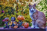 Autumn Decorations Posters - Halloween Cat Poster by Garry Gay
