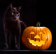 Holliday Prints - Halloween Pumpkin And Cat Print by Dirk Ercken