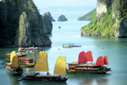 Wooden Ship Prints - Halong Bay Sails 01 Print by Rick Piper Photography