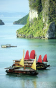 Wooden Ship Posters - Halong Bay Sails 02 Poster by Rick Piper Photography
