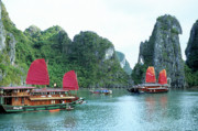 Wooden Ship Posters - Halong Bay Sails 04 Poster by Rick Piper Photography