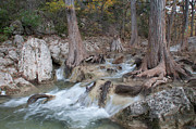 Hamilton Texas Prints - Hamilton Pools Trail 1 Print by Hrayr Galoyan
