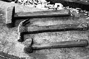 Gaspar Avila - Hammers