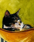 Cats Metal Prints - Hammock Metal Print by Molly Poole