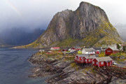 Red Buildings Framed Prints - Hamnoy Rorbu Village Framed Print by Heiko Koehrer-Wagner