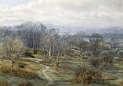 Foliage In White Mountains Posters - Hampstead Heath Looking Towards harrow on the Hill Poster by Edith Martineau