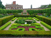 Hampton Court Prints - Hampton Court Palace Garden Print by Anne Gordon