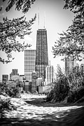 Popular Art - Hancock Building Through Trees Black and White Photo by Paul Velgos