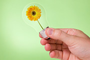 Grow Inside Prints - Hand holding lightbulb with  flower inside Print by G J