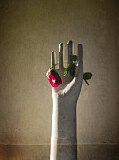 Interior Still Life Metal Prints - Hand Holding Rose Metal Print by Terry Rowe