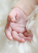 Child Photos - Hand of an Angel by Lisa  Phillips