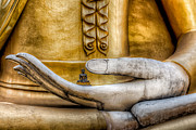 Sitting  Digital Art Metal Prints - Hand of Buddha Metal Print by Adrian Evans