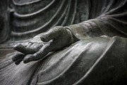 Adam Romanowicz - Hand of Buddha - Japanese Tea Garden