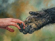 Animal Art Prints - Hands Print by David Stribbling