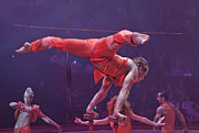 Act Man Photos - Handstand in Paris Circus by Matthew Bamberg