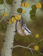 Aspen Tree Paintings - Hanging Around-Red Breasted Nuthatch by Rick Bainbridge