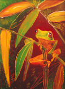 Amphibians Glass Art - Hanging in there by Anna Skaradzinska