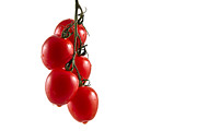 Tomato Framed Prints - Hanging Truss Framed Print by Gert Lavsen